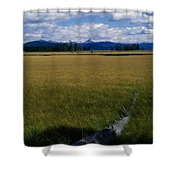 Shower Curtain featuring the photograph Yellowstone Log by J L Woody Wooden