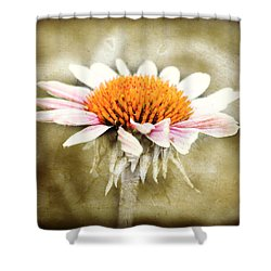 Young Petals Shower Curtain by Julie Hamilton