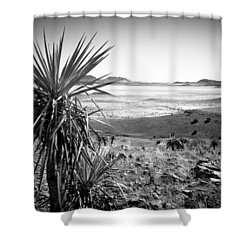 Yucca With A View Shower Curtain