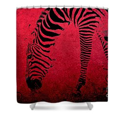 Zebra On Red Shower Curtain by Aimelle