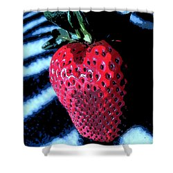Shower Curtain featuring the photograph Zebra Strawberry by Kym Backland