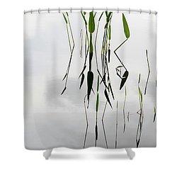 Zen Shower Curtain by Sabrina L Ryan
