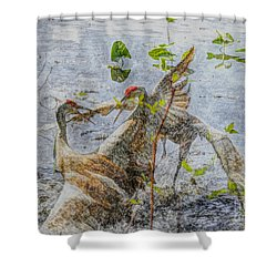 Zhandou Shower Curtain