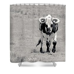 Zion Bull II Shower Curtain by Julie Niemela