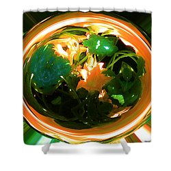 Shower Curtain featuring the photograph Zucchini Flowers Under Glass by George Pedro