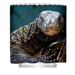 A Crocodile Monitor Portrait Shower Curtain by Lana Trussell