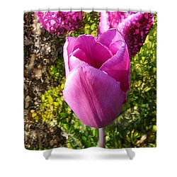 A Perfect Tulip Shower Curtain