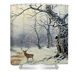 A Stag In A Wooded Landscape  Shower Curtain by Nils Hans Christiansen