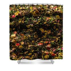 Autumn's Mosaic Shower Curtain by Alana Thrower