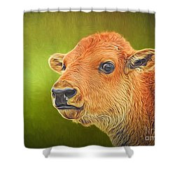 Buffalo Calf Shower Curtain