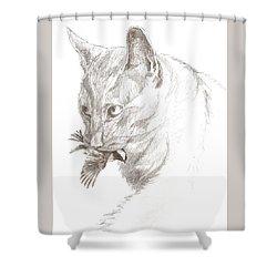 Cat And Chickadee Shower Curtain
