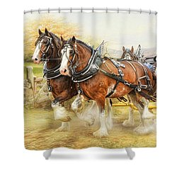 Clydesdales In Harness Shower Curtain by Trudi Simmonds