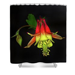 Columbine #2 Shower Curtain