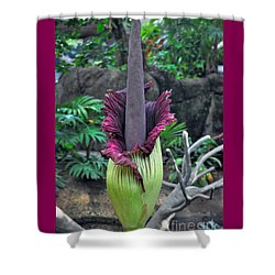 Corpse Flower Shower Curtain by Savannah Gibbs