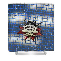 Crazy Crab Spider Shower Curtain