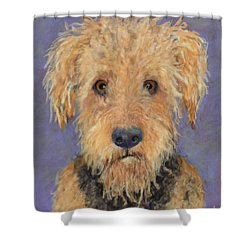 DJ Shower Curtain by Pat Saunders-White