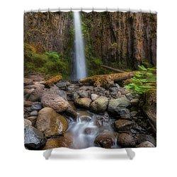 Dry Creek Falls II Shower Curtain by David Gn