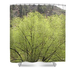 Tree Ute Pass Hwy 24 Cos Co Shower Curtain