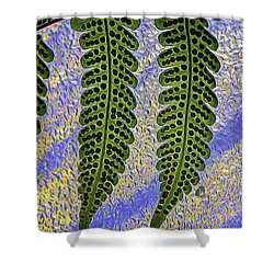 Shower Curtain featuring the photograph  Fern Fronds by Darleen Stry