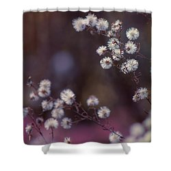 Fuzzy Fall  Shower Curtain by Bulik Elena