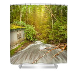 Shower Curtain featuring the photograph  In The Woods by Rose-Maries Pictures