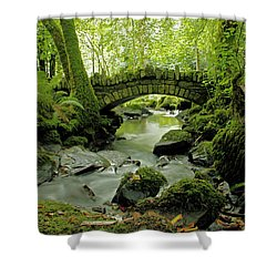 Kilfane Glen  Shower Curtain