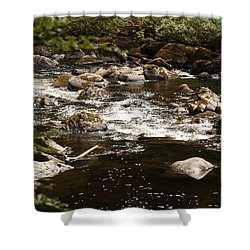 Little Stream At The Hermitage Shower Curtain by Martina Fagan