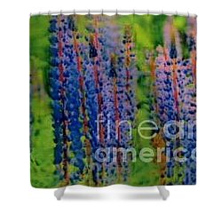 Lois Love Of Lupine Shower Curtain
