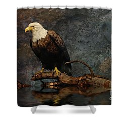 Magestic Eagle  Shower Curtain