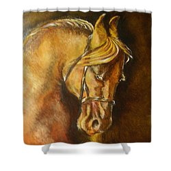 A Winning Racer Brown Horse Shower Curtain by Remy Francis