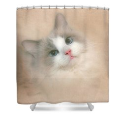 Misty Blue Shower Curtain by David and Carol Kelly