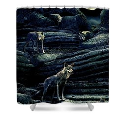 Moonlit Wolf Pack Shower Curtain by Mal Bray