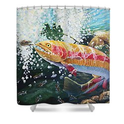 Not Your Average Goldfish Shower Curtain