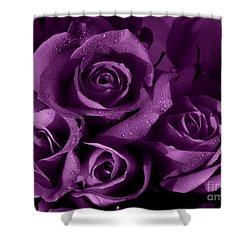 Purple Haze Shower Curtain by Nancie DeMellia