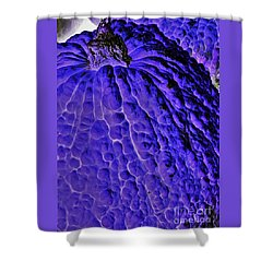 Purple Pumpkin By Jasna Gopic  Shower Curtain