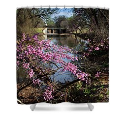 Redbuds And A Distant Bridge Shower Curtain