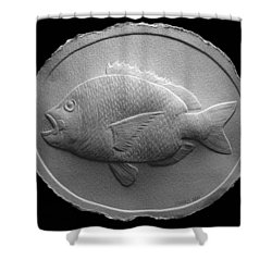 Relief Saltwater Fish Drawing Shower Curtain