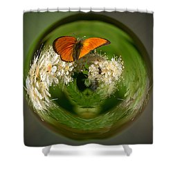 Shower Curtain featuring the photograph  Scarce Copper 3 by Jouko Lehto