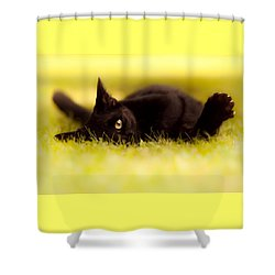 ' See You  Shower Curtain by Bulik Elena