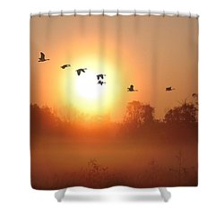 Returning South Shower Curtain