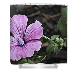 Swirl Sensation Shower Curtain by Deborah Klubertanz