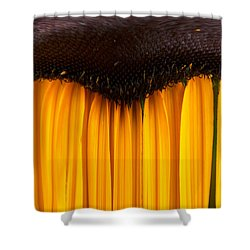 The Curtains Shower Curtain by Jouko Lehto
