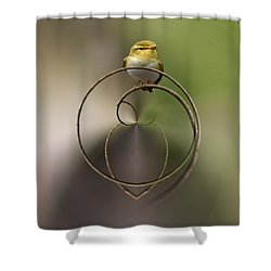 Wood Warbler Shower Curtain by Jouko Lehto
