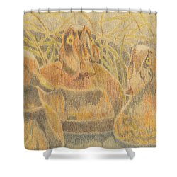 Wooden Duck Decoys Shower Curtain
