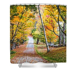#0119 - New Hampshire Shower Curtain