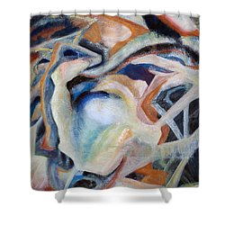 01317 Process Shower Curtain