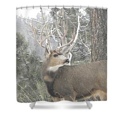 Buck Front Yard Divide Co Shower Curtain