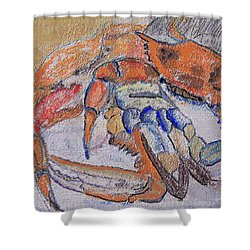 02282011 Boiled Crabs Shower Curtain