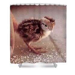 02_contact With Nature Shower Curtain