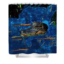 04142015 Gator Hole Shower Curtain